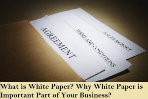 What is White Paper and Why is the Whitepaper most important part of your business?